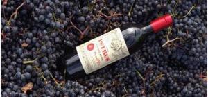 Виноградное вино - напиток богов