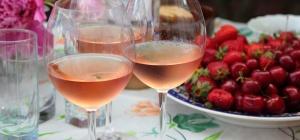Розовые вина: тонкости выбора и подачи