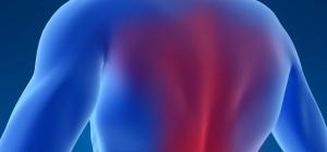 Почему очень сильно болит спина