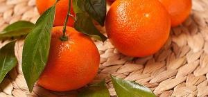 Как сделать эфирное масло из мандаринов