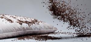 Какие бывают наполнители для подушек