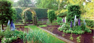 Как все разместить в огороде: сажаем овощи, кусты и деревья