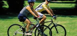 Какой лучше всего покупать велосипед