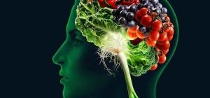 Какие витамины нужны для мозга