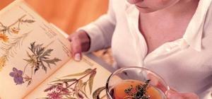 Какие лекарственные травы применяют при заболеваниях мочеполовой системы