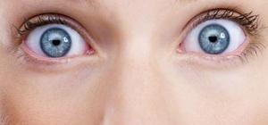 Все о глазах как органе
