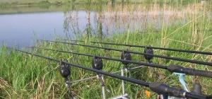 Как ловить рыбу на живца