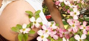 Отчего бывает аллергия при беременности