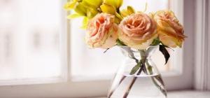 Какие цветы долго стоят в вазе в свежем виде