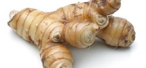 Колганов корень - лекарство из русских былин