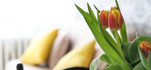 Как создать весенний интерьер своими руками