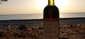 Абхазские вина: современные технологии и тысячелетние традиции