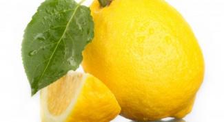 ухаживать за лимоном в домашних условиях