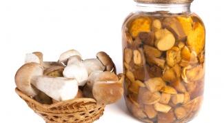 Как засолить грибы