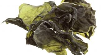 Как используются водоросли
