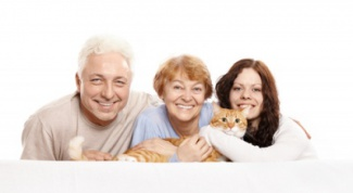 Как делать уколы кошке