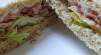 Как выбрать сэндвичницу в 2017 году