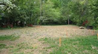 Как взять участок земли в аренду