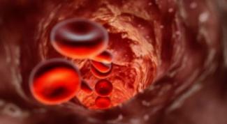 Как повысить кровообращение