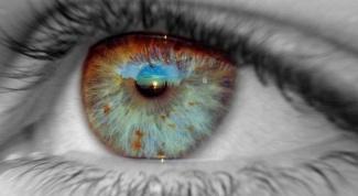 Как развить силу взгляда