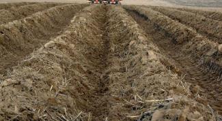 Как изменить вид разрешенного использования земли