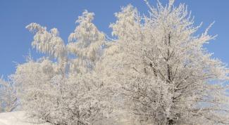 Как снимать зимний пейзаж