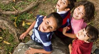Как организовать детский лагерь