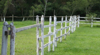 Как снять земельный участок с кадастрового учета