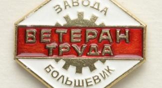 Как получить ветеран труда в Московской области