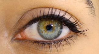 Как поддержать зрение