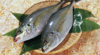 How to cook fish for a couple