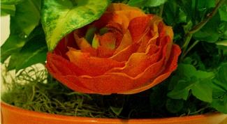 Как оформить цветочный горшок