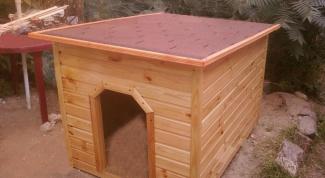 Как построить будку для немецкой овчарки
