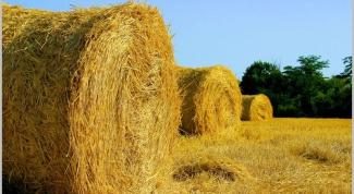 Как заготавливать сено