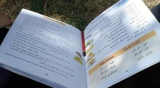 Как научиться писать на арабском