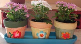 Как оставить цветы в отпуск