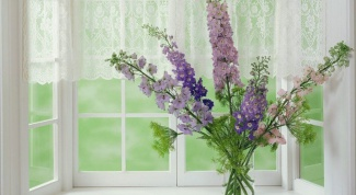 How to clean the window from paint