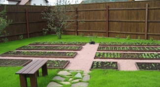 How to make a plot in the garden Association