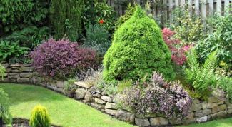 Как распланировать садовый участок