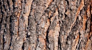 Как сделать фактуру дерева