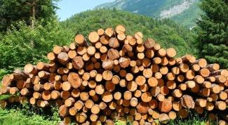 Как открыть лесопилку