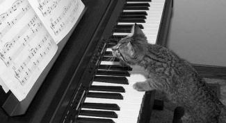 How to compose music to the song