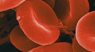 Почему повышается гемоглобин