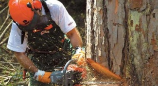 How to adjust the carburetor of a chainsaw