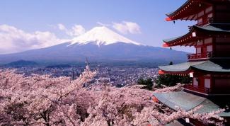 Как выучить японский язык быстро