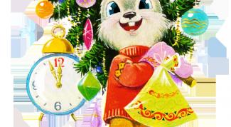 Как встретить Новый год в Казани