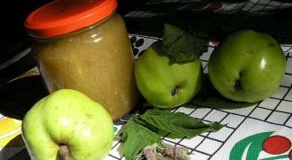Как готовить фруктовое пюре