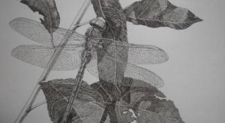 Как сделать стрекозу из бумаги