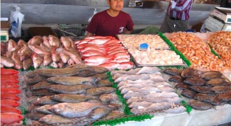 Как открыть магазин рыбы в 2017 году