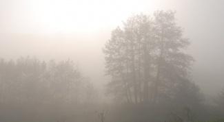 В какой программе добавить туман в видеоклип